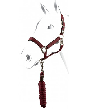 CAVEZZA NYLON EQUESTRO C/LUNGHINA MODELLO SHINY FITTING