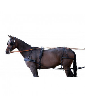 FINIMENTO CARROZZA SINGOLO IN CUOIO HARNESS