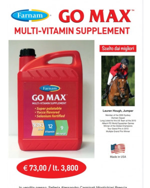 GO MAX MULTI VITAMIN SUPPLEMENT LT. 3.8