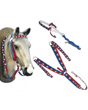 SET TESTIERA WESTERN PETTORALE REDINI TIE DOWN NYLON COLORE USA